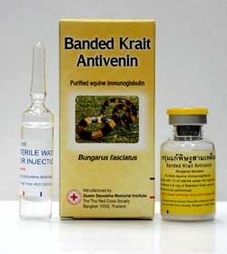 Banded Krait Antivenin on AsianSnakeWine.com